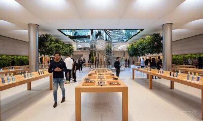 Một Apple Store tại Mỹ. Ảnh: The Verge.