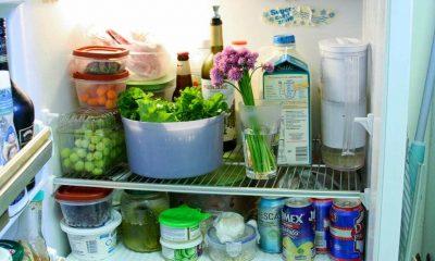 Để quá nhiều đồ ăn trong tủ lạnh có thể gây tốn điện. Ảnh: PL.